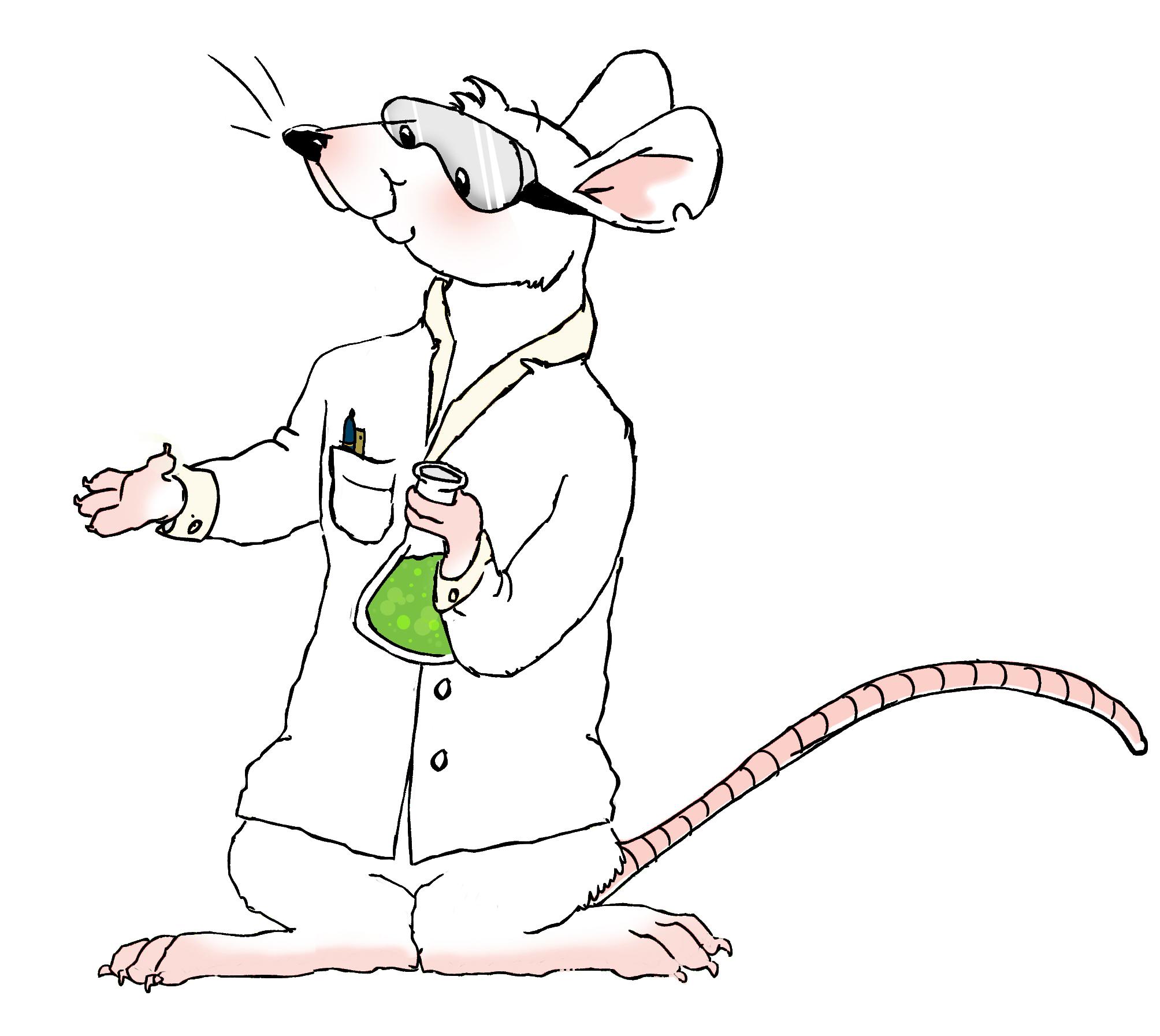 rat-cute